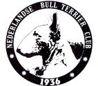 N.B.T.C: Dutch Bull Terrier Club